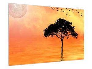 Obraz stromu v západu slunce (V020480V9060)