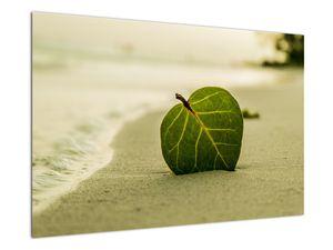 Kép egy levél a homokban (V020485V9060)