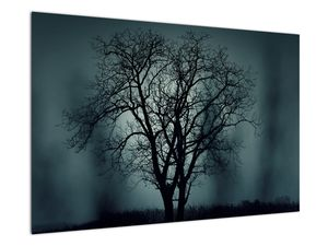 Obraz stromu v zatmění (V020675V9060)