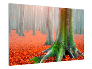 Obraz stromů (V020708V9060)