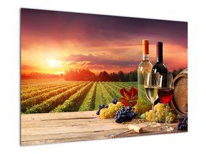 Obraz vinice s vínem (V020717V9060)