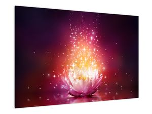 Obraz Lotosového květu (V020720V9060)
