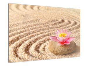 Egy kő, virággal a homokban képe (V020864V9060)