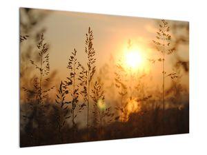 Obraz východu slunce (V020870V9060)