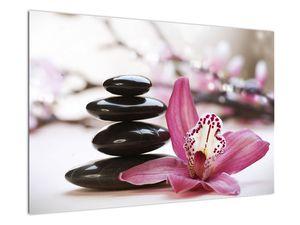 Obraz masážních kamenů a orchidee (V020910V9060)