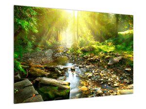 Obraz řeky v zeleném lese (V020942V9060)