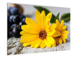 Obraz žluté květiny (V020952V9060)