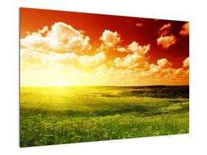 Obraz lúky so žiariacim slnkom (V021174V9060)