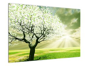 Obraz stromu na lúke (V021282V9060)