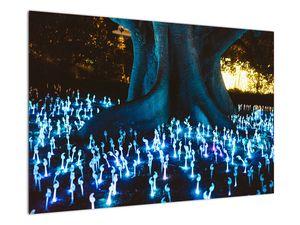 Obraz - Magický strom (V021631V9060)