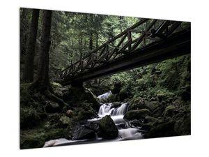 Obraz z černého lesa (V021686V9060)
