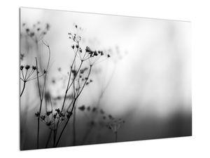 Kép - Réti virágok részlete (V022197V9060)