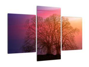 Tablou pomilor în ceață (V020088V90603PCS)