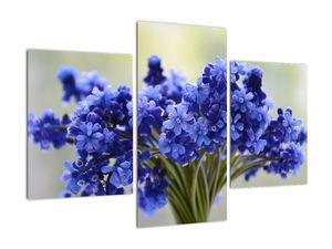 Obraz kytice modrých květů (V020175V90603PCS)