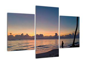 Kép egy nőről a tengerparton (V020204V90603PCS)