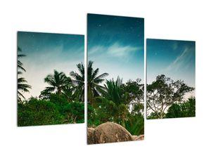 Tablou - palmierii (V020239V90603PCS)