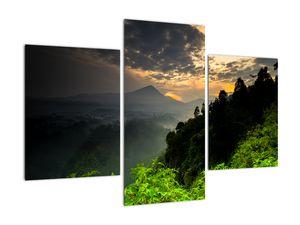 Obraz - zelená horská krajina (V020249V90603PCS)