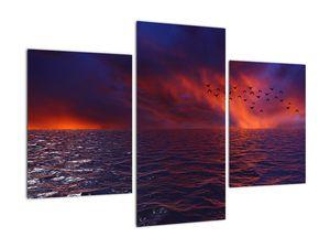 Obraz moře s ptáky (V020351V90603PCS)