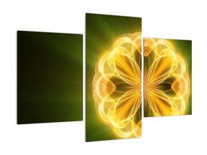Obraz žluté květiny (V020451V90603PCS)