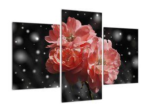 Obraz růžové květiny (V020471V90603PCS)
