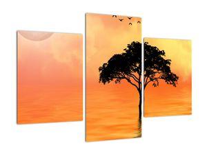 Obraz stromu v západu slunce (V020480V90603PCS)