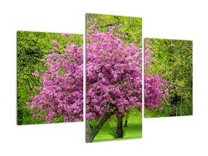 Obraz rozkvetlého stromu na louce (V020654V90603PCS)