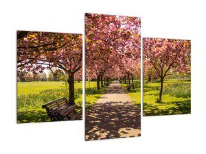 Obraz - sad třešní (V020679V90603PCS)