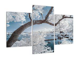 Obraz zasněženého stromu u vody (V020718V90603PCS)