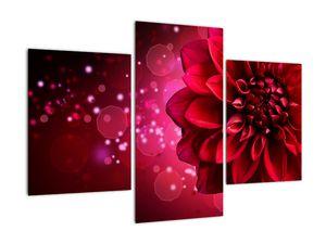 Obraz červené kvety (V020807V90603PCS)