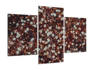 Obraz květiny Pomněnka lesní (V020811V90603PCS)
