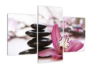 Obraz masážních kamenů a orchidee (V020910V90603PCS)