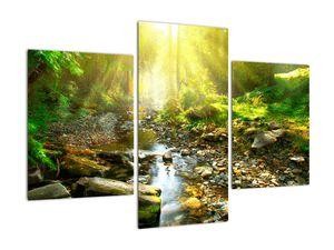 Obraz řeky v zeleném lese (V020942V90603PCS)