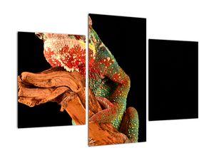 Obraz chameleona na větvi (V021125V90603PCS)