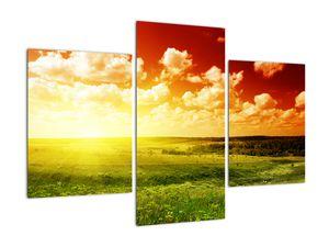 Obraz lúky so žiariacim slnkom (V021174V90603PCS)