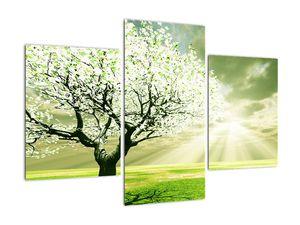 Obraz stromu na lúke (V021282V90603PCS)