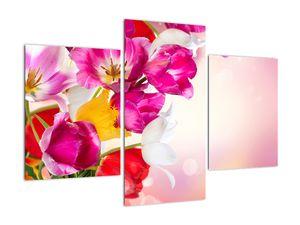 Obraz tulipánov (V021295V90603PCS)