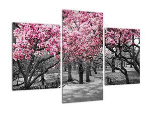 Obraz stromů Magnolíie (V021344V90603PCS)