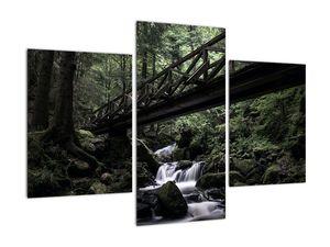 Obraz z černého lesa (V021686V90603PCS)