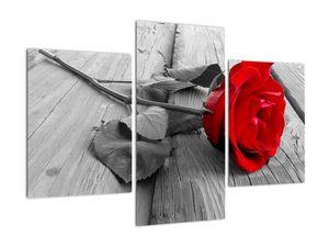 Slika crvene ruže (V022288V90603PCS)