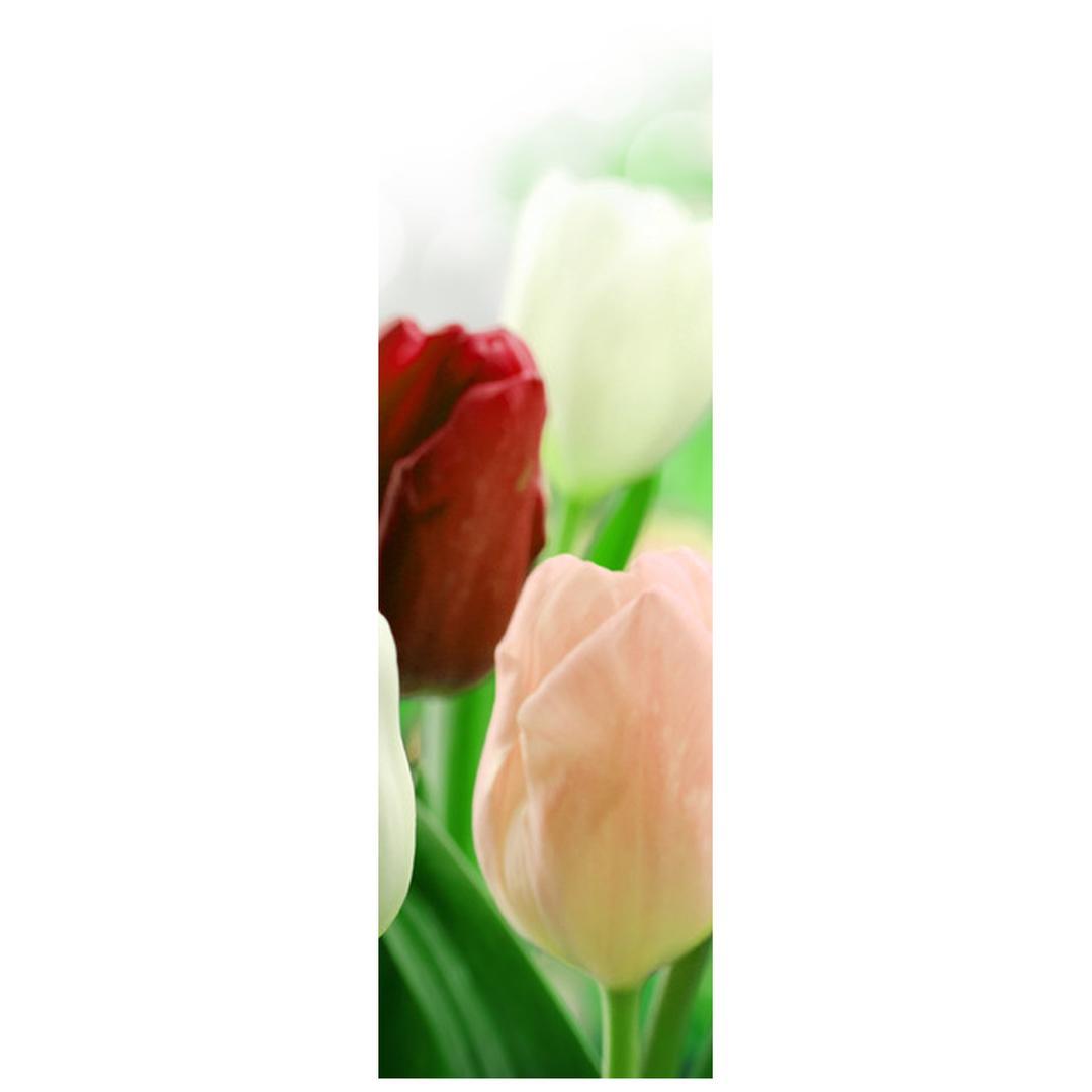 Fotoroleta R012181R42150 (R012181R42150)