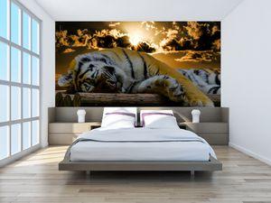 Fototapeta - Spící tygr (T020408T200112)